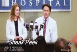 Greys Anatomy season 13 episode 9